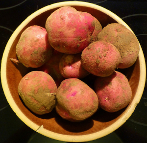 Raw potatoes when soaked in cool water really help with dark circles under your eyes; who would have thought!