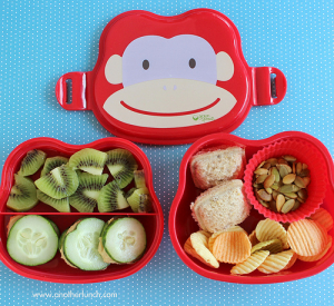 What do you pack your kids for lunch? Veggies, fruit and a sandwich are a must!
