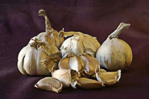 Garlic is a great prebiotic food.